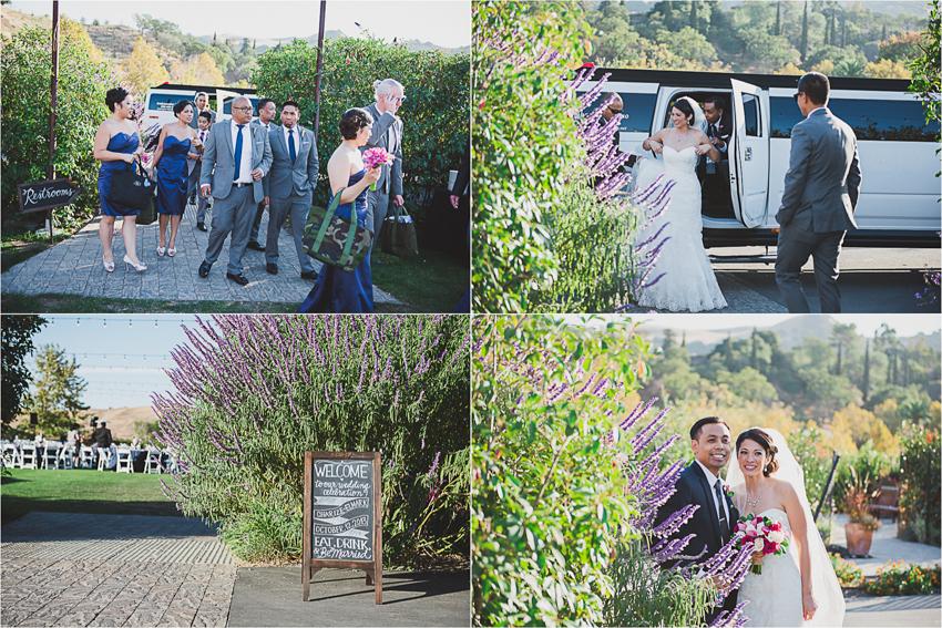 Charize_Elmark_Manuel_Wedding_WenteVineyard_LetlovePhotography032