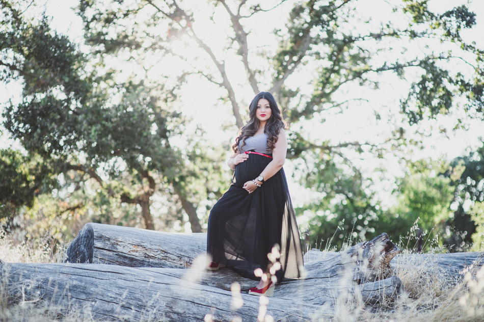 minton_family_maternity_letlove_photography-2